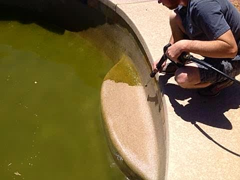 Here we have a green pool that is being drained and pressure washing all the excess build up to proceed with an Acid Wash.